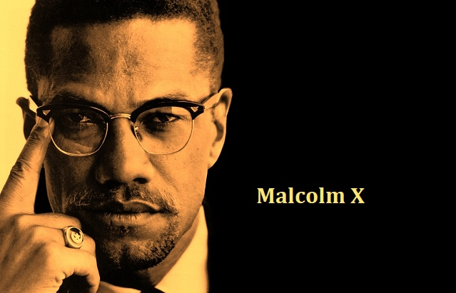 malcolm x full movie download